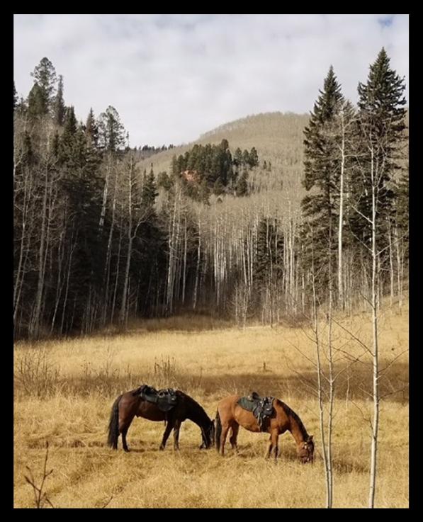 Training in mountainous terrain